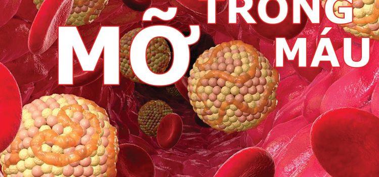Mỡ máu – Mối đe dọa gây ra bệnh nhồi máu cơ tim, tai biến mạch máu não