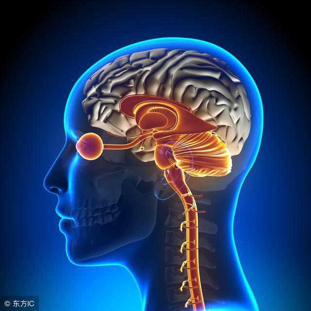 Dấu hiệu điển hình của bệnh thiếu máu não: Hãy cảnh giác sớm để tránh bị đột quỵ bất ngờ - Ảnh 3